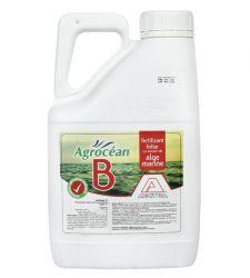 biostimulator-foliar-extract-alge-marine-agrocean-b-aectra