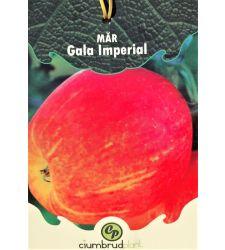 mar-gala-imperial-ciumbrud-plant