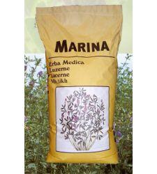 samanta-lucerna-pura--marina-prima-sementi