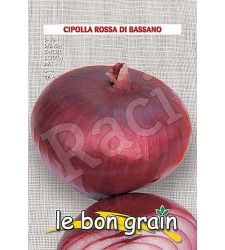 seminte-ceapa-rosie-rossa-di-bassano-raci-sementi