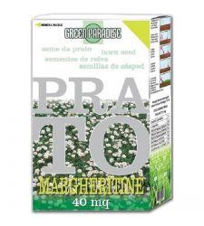 Seminte gazon cu margarete (1 kg), Green Paradise