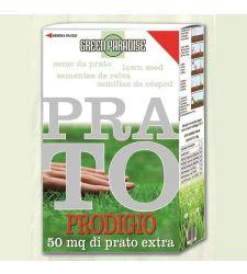 Seminte gazon Prodigio (1 kg), Green Paradise