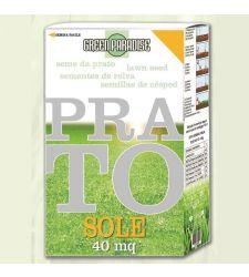 Seminte gazon Sun (1 kg), Green Paradise