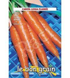 seminte-morcovi-flakee-raci-sementi