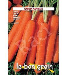 seminte-morcovi-lunga-di-nantes-raci-sementi