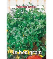 seminte-patrunjel-de-frunza-comune-raci-sementi