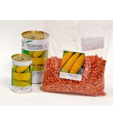 Seminte porumb zaharat (dulce) soi autohton Sweet Spirit F1 (100.000 seminte), Agrosel
