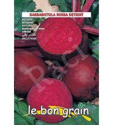 seminte-sfecla-rosie-detroit-2-raci-sementi