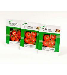 Seminte tomate Ronda F1 (250 seminte), Agrosel