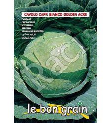 seminte-varza-alba-golden-acre-raci-sementi