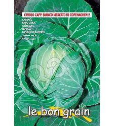 seminte-varza-alba-mercato-di-copenhagen-raci-sementi