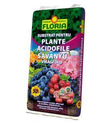substrat-pentru-plante-acidofile-50-l-floria