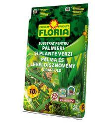 substrat-pentru-plante-verzi-si-palmieri-floria