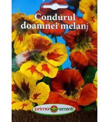 seminte-condurul-doamnei-mix-de-culori-prima-sementi