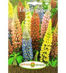 seminte-lupin-peren-mix-de-culori-prima-sementi