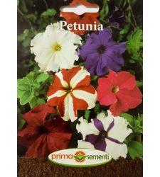 seminte-petunia-mix-de-culori-prima-sementi