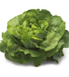 Seminte salata de capatana Pia (5 g),Rijk Zwaan