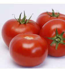 Seminte tomate Cinto F1 (1.000 seminte), Rijk Zwaa