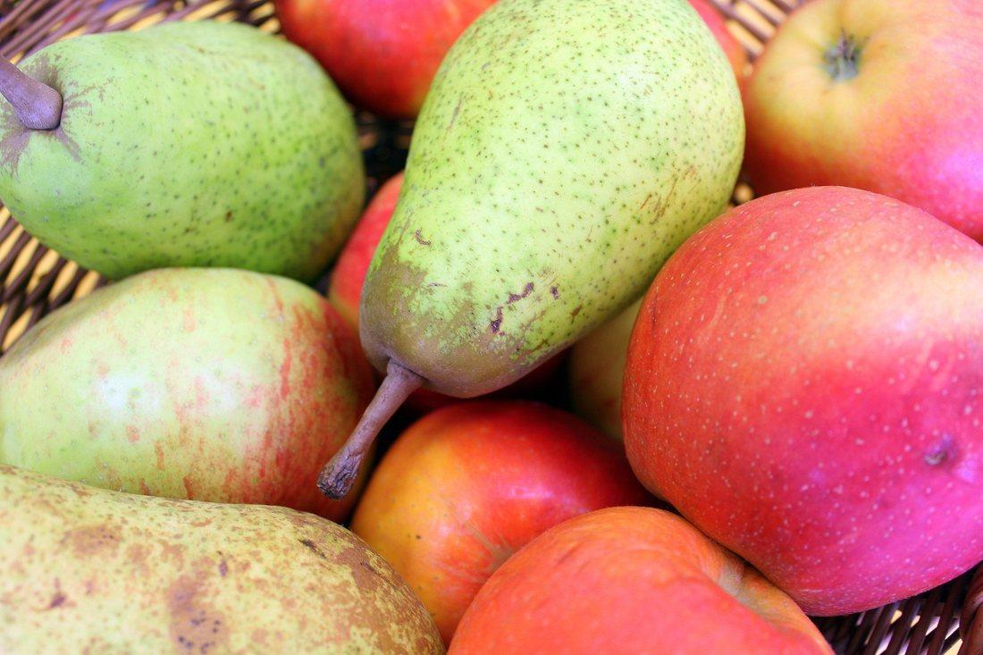 Combaterea bolilor si daunatorilor in pomicultura. Speciile semintoase